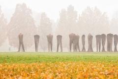 Die-Unerkannten-im-Nebel