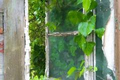 Altes-Fenster-114805