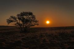 Sonnenuntergang-in-der-Kalahariwüste-Namibia-