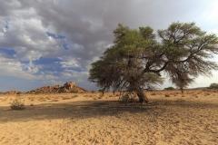 Zeit-der-Stille-Outback-Namibia